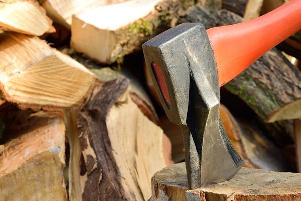 nowoczesny rębak do drzewa