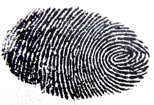 sprawdzony detektyw na śląsku